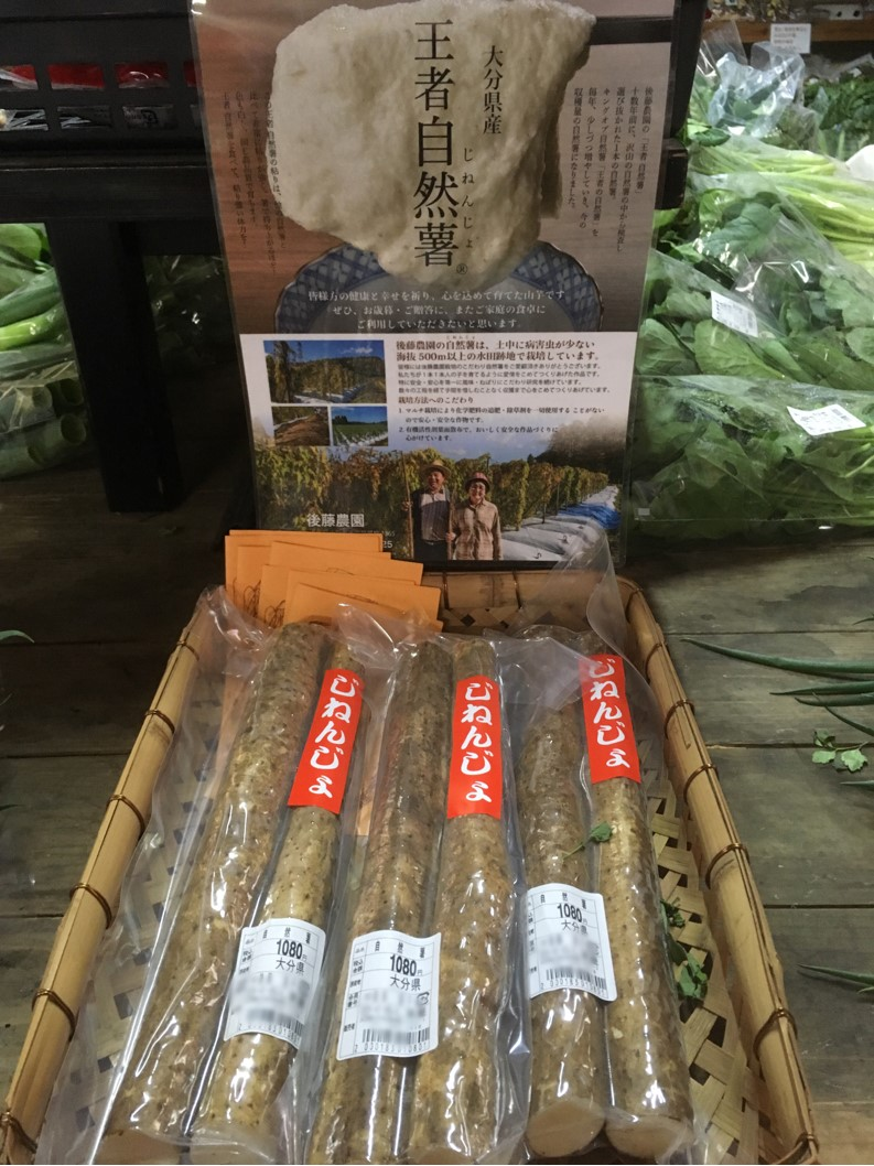 【出荷情報】自然薯(ひぐらし茶屋)